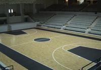 Sport floors